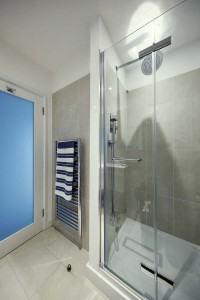 Shower and towel rail.